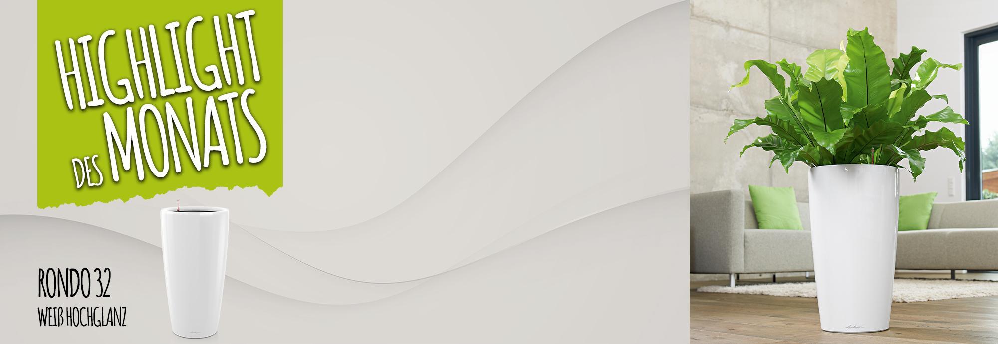 Catch of the Month: 15 Prozent sparen beim Kauf von roNDO 32 weiß hochglanz