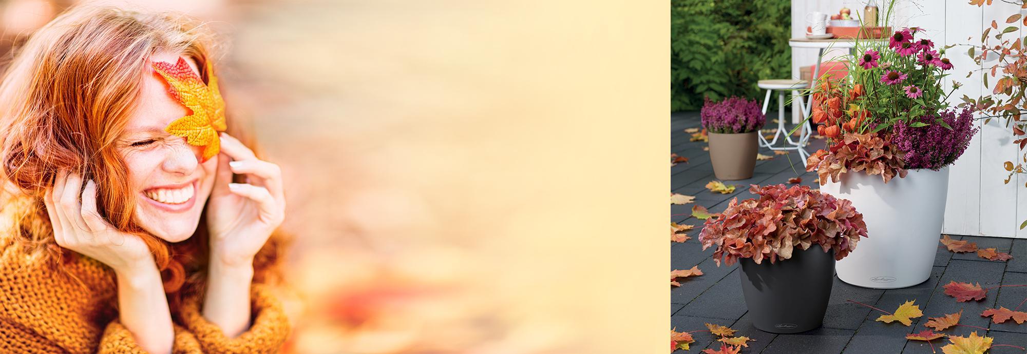 Sussurri d'Autunno con il colore CLASSICO