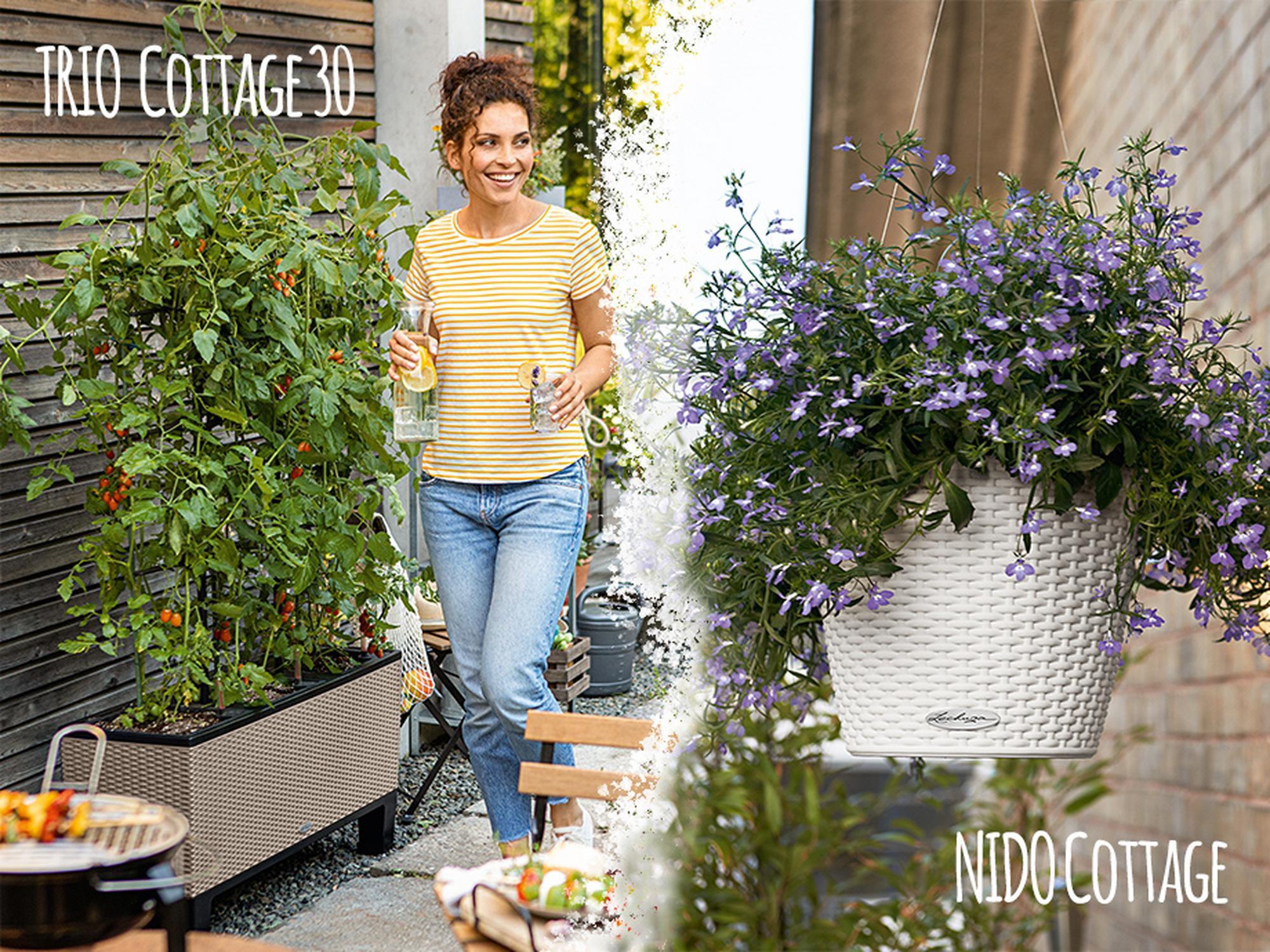 Decoración jardines y terrazas 10% de descuento