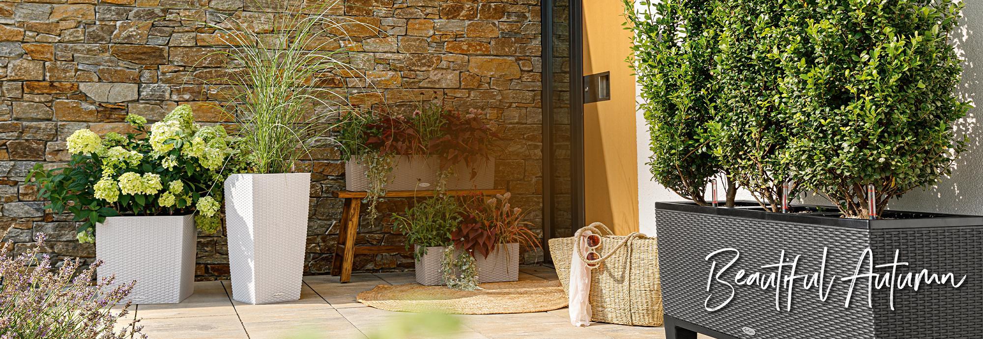 Φθινοπωρινές ιδέες με την LECHUZA. Όμορφη διάθεση τις γκρίζες ημέρες
