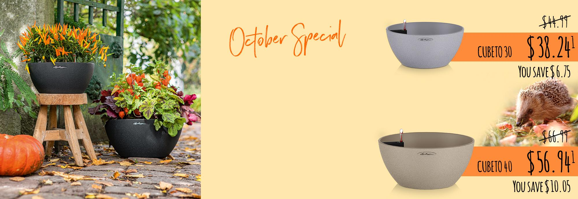 October Special: Creative Autumn Decoration with CUBETO Stone