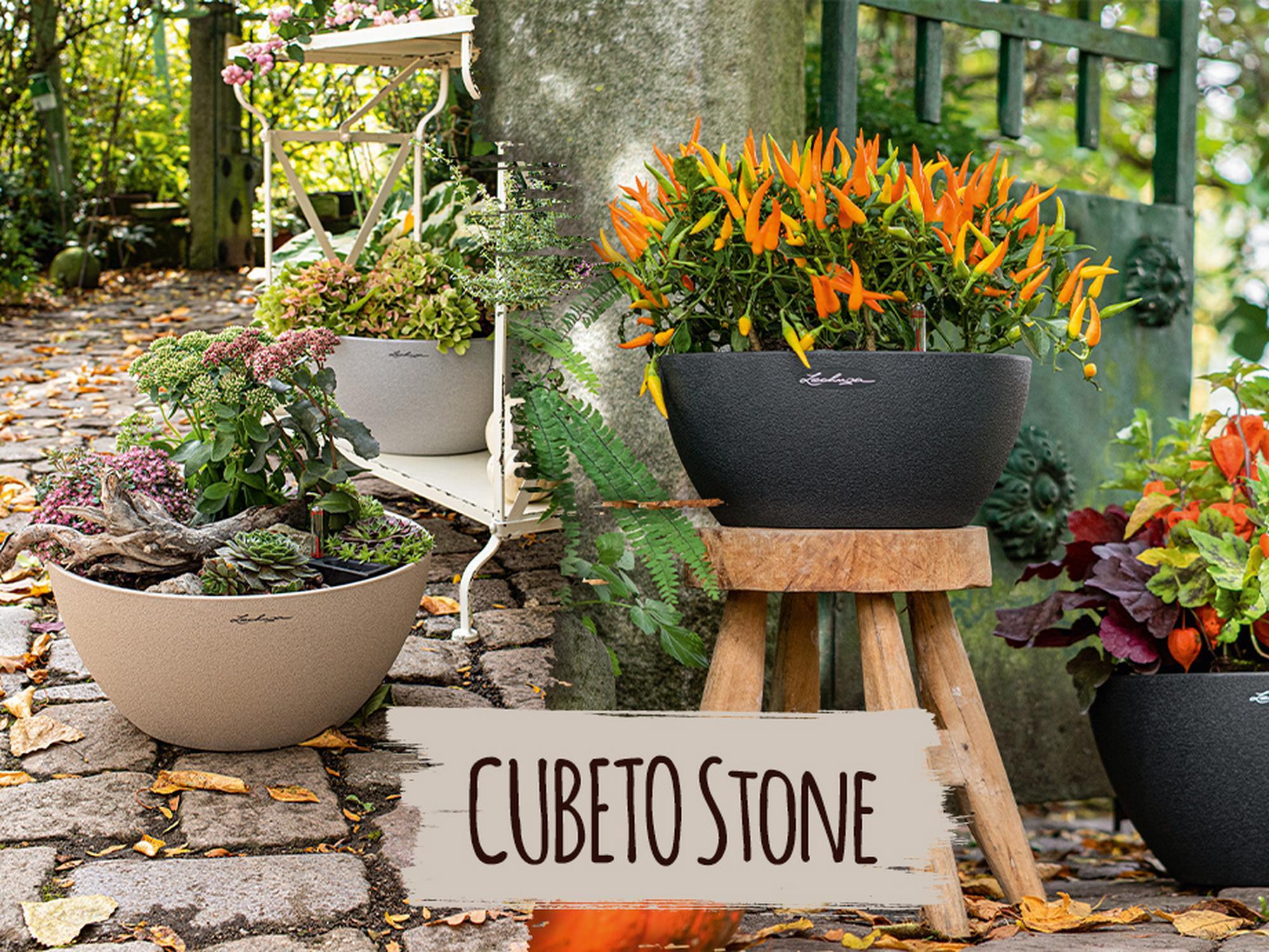 CUBETO Stone en promoción 10% de descuento