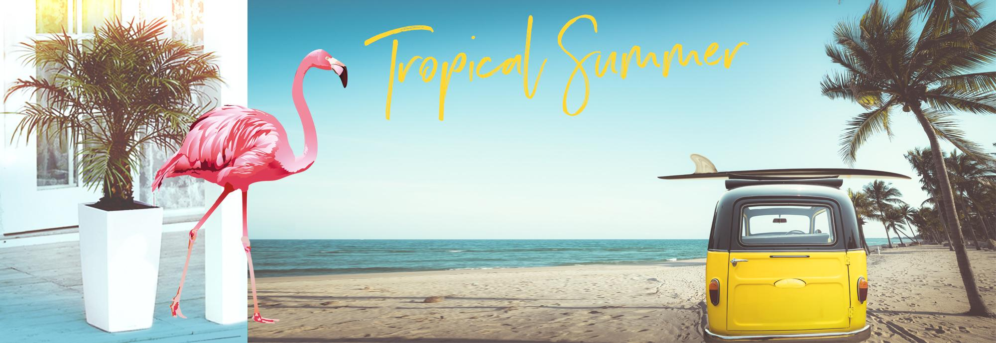 hero_banner_cubico_color_tropical
