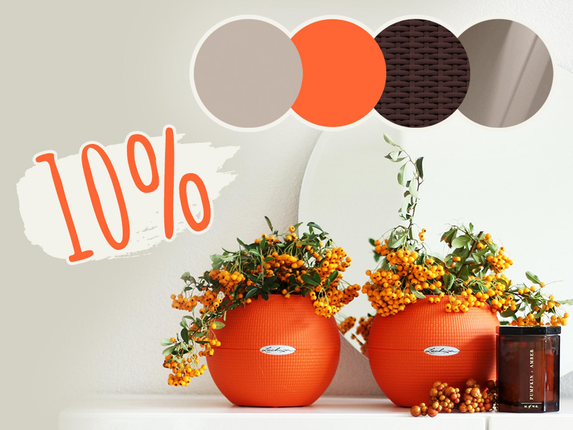 10% di sconto sui colori di questa stagione