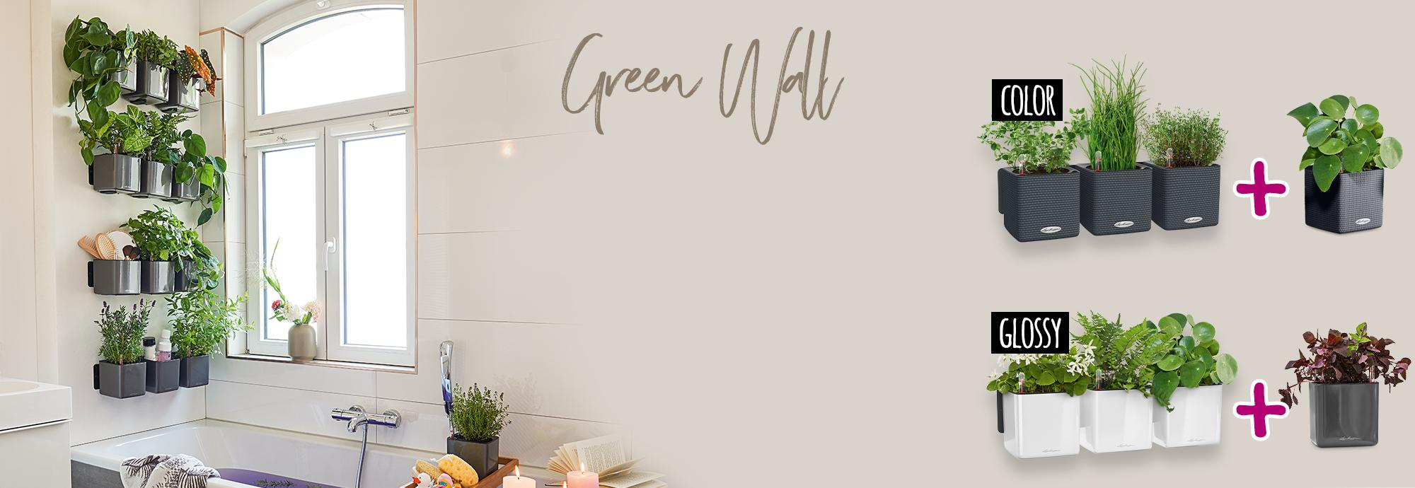Con la compra de un Green Wall llévate una CUBE 14 gratis