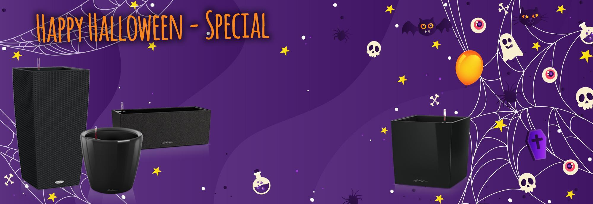 Schaurig-schöne Gruseldeko mit unserem Halloween-Special