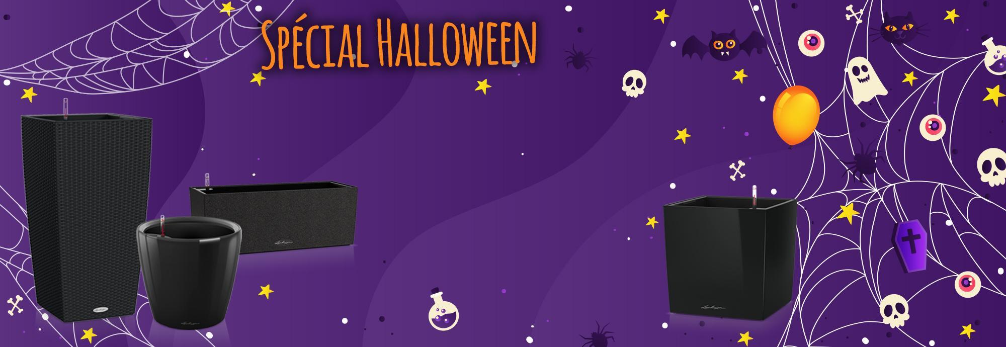Une décoration belle et effrayante avec notre spécial Halloween