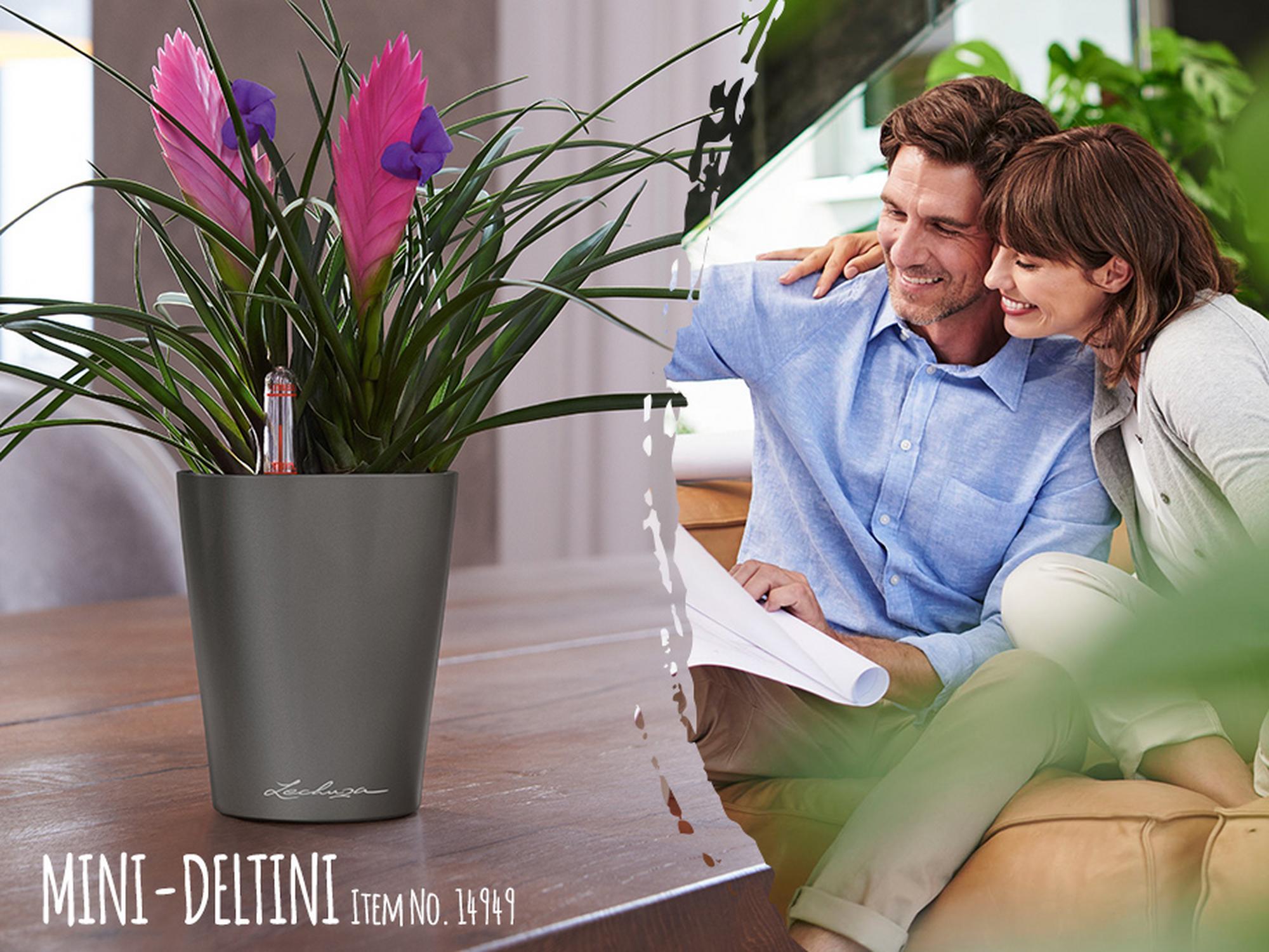Get a MINI-DELTINI self watering planter for free