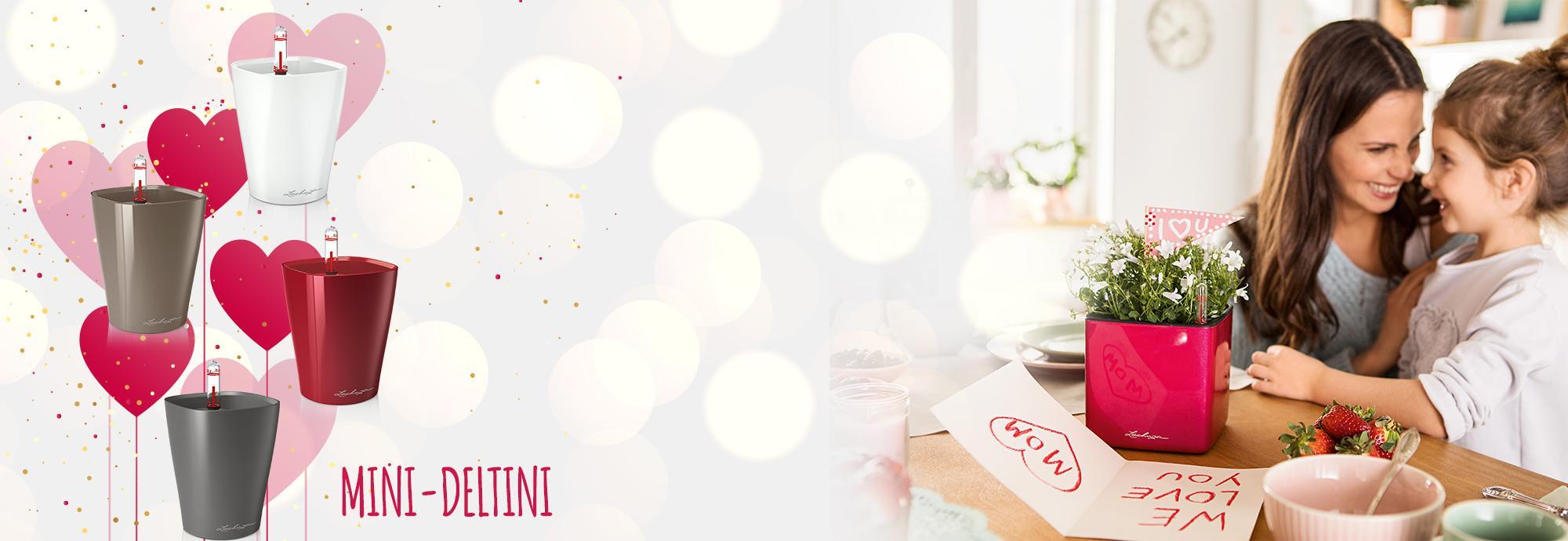 Оформи заказ на 350 BYN и получи кашпо MINI-DELTINI в подарок!