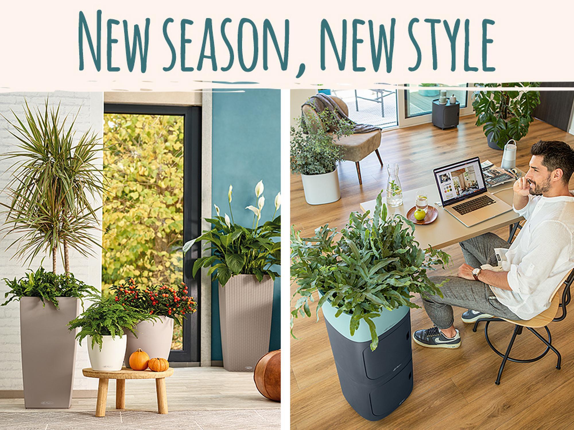 'New season