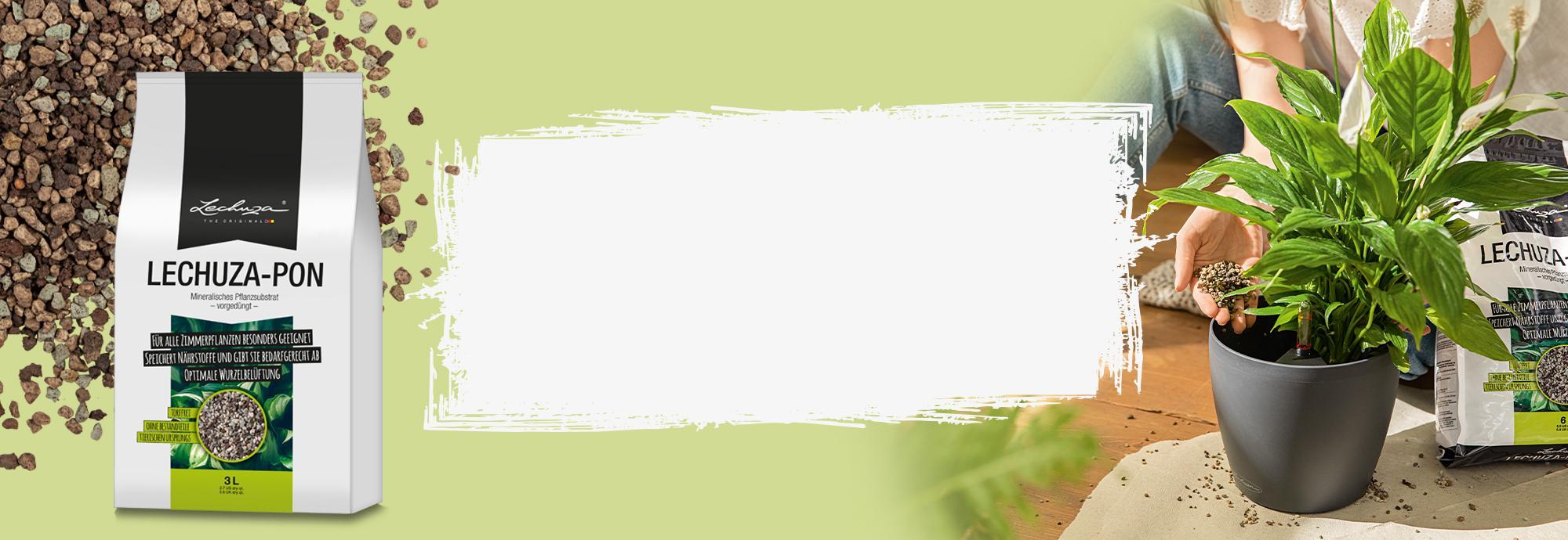 10% de descuento en LECHUZA-PON 3L sustrato de alta calidad alternativo a la tierra