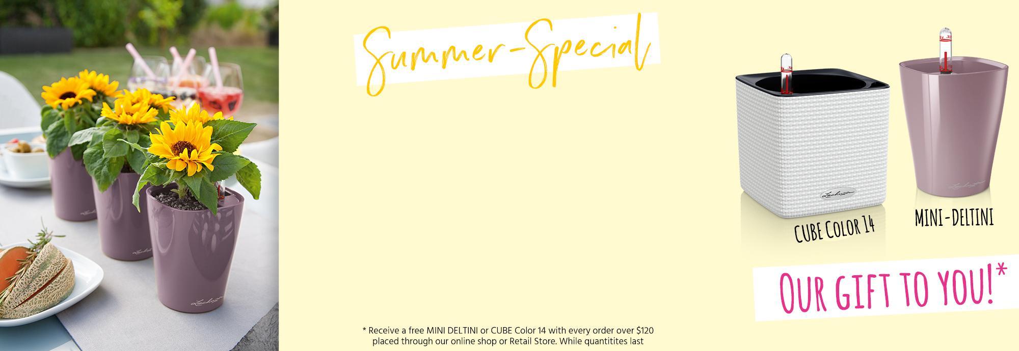 hero_banner_promo-summer-special_ca_en