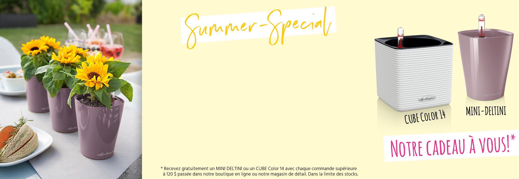 hero_banner_promo-summer-special_ca_fr