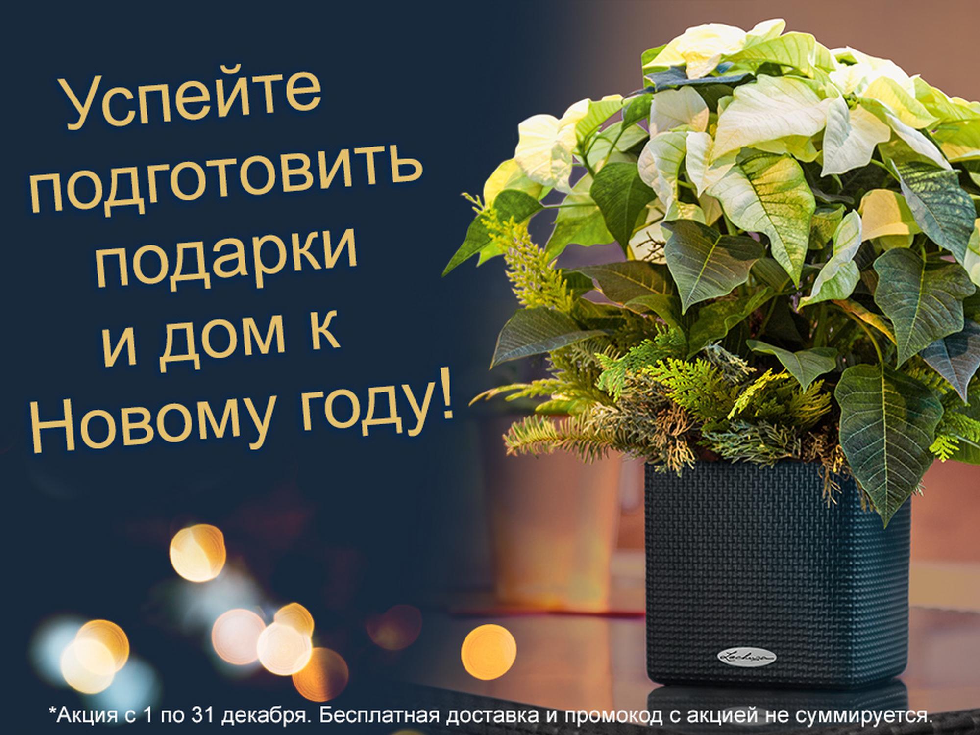 hero_banner_promo12-2019_xs_ru
