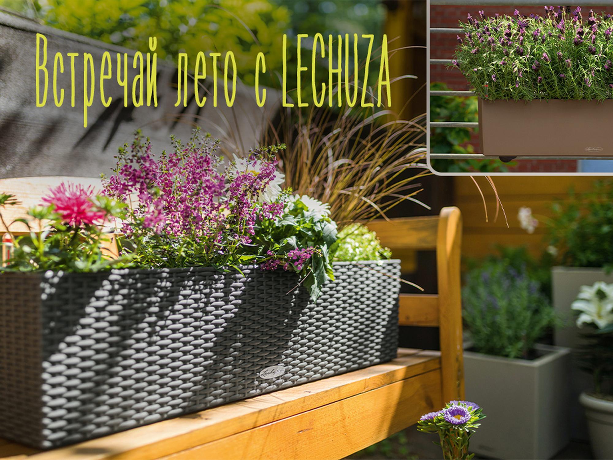 -20% на все кашпо для балконных растений