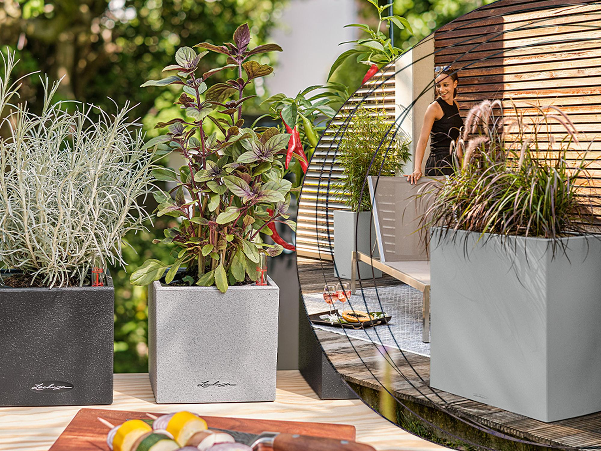 Buy 1 planter and get a 7% discount on another item in your basket