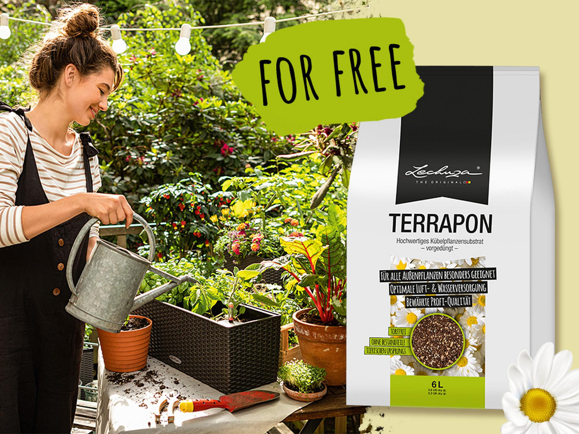 Get TERRAPON 6 l for free + free delivery