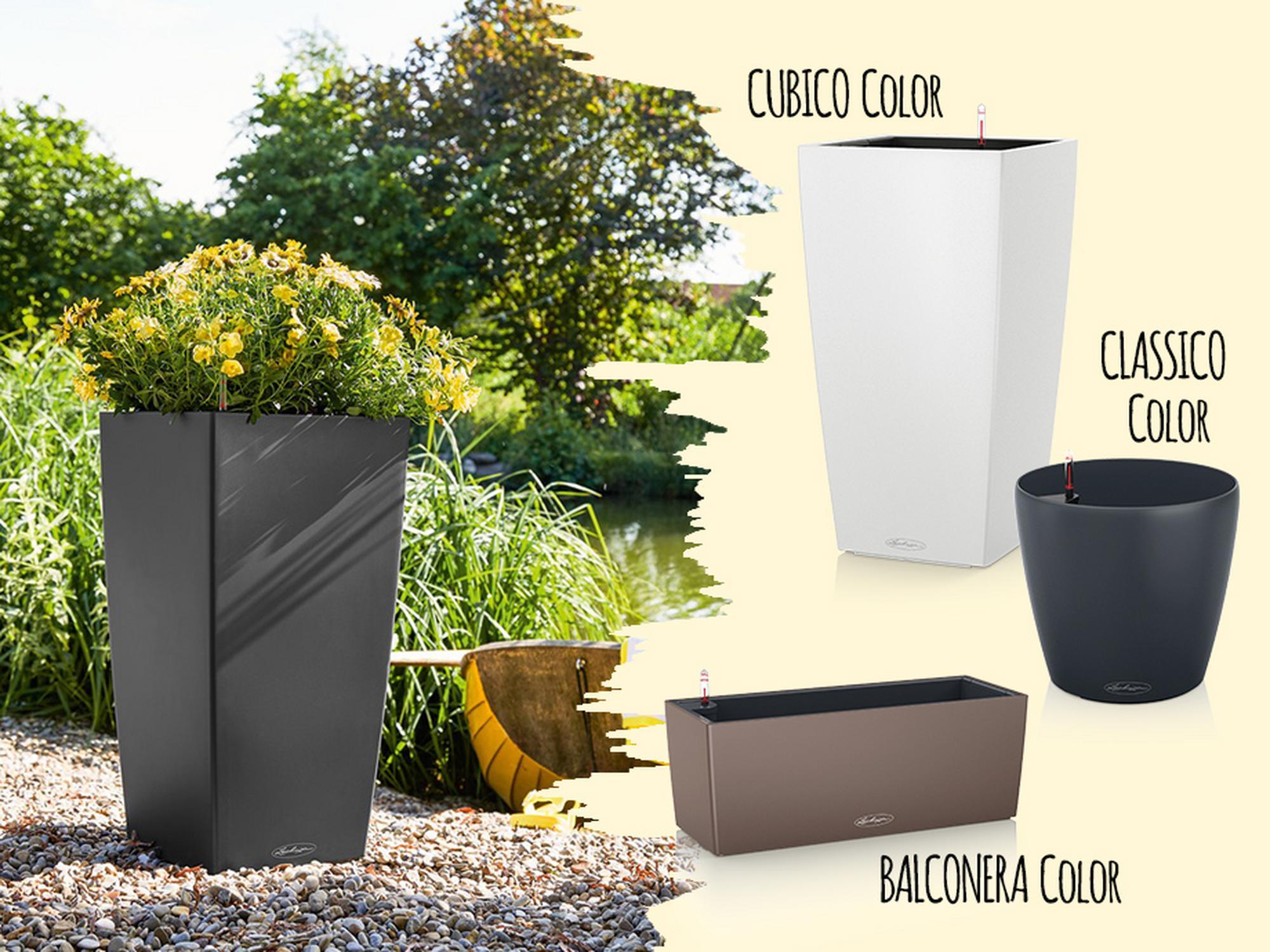 10% di sconto sui vasi della collezione Color