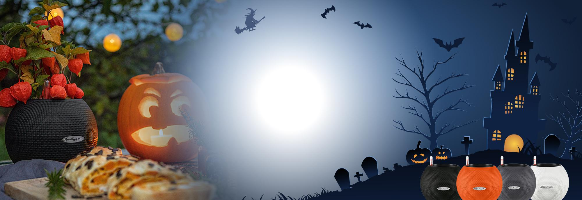 'Especial Halloween: Dos PURO 20 por solo 24