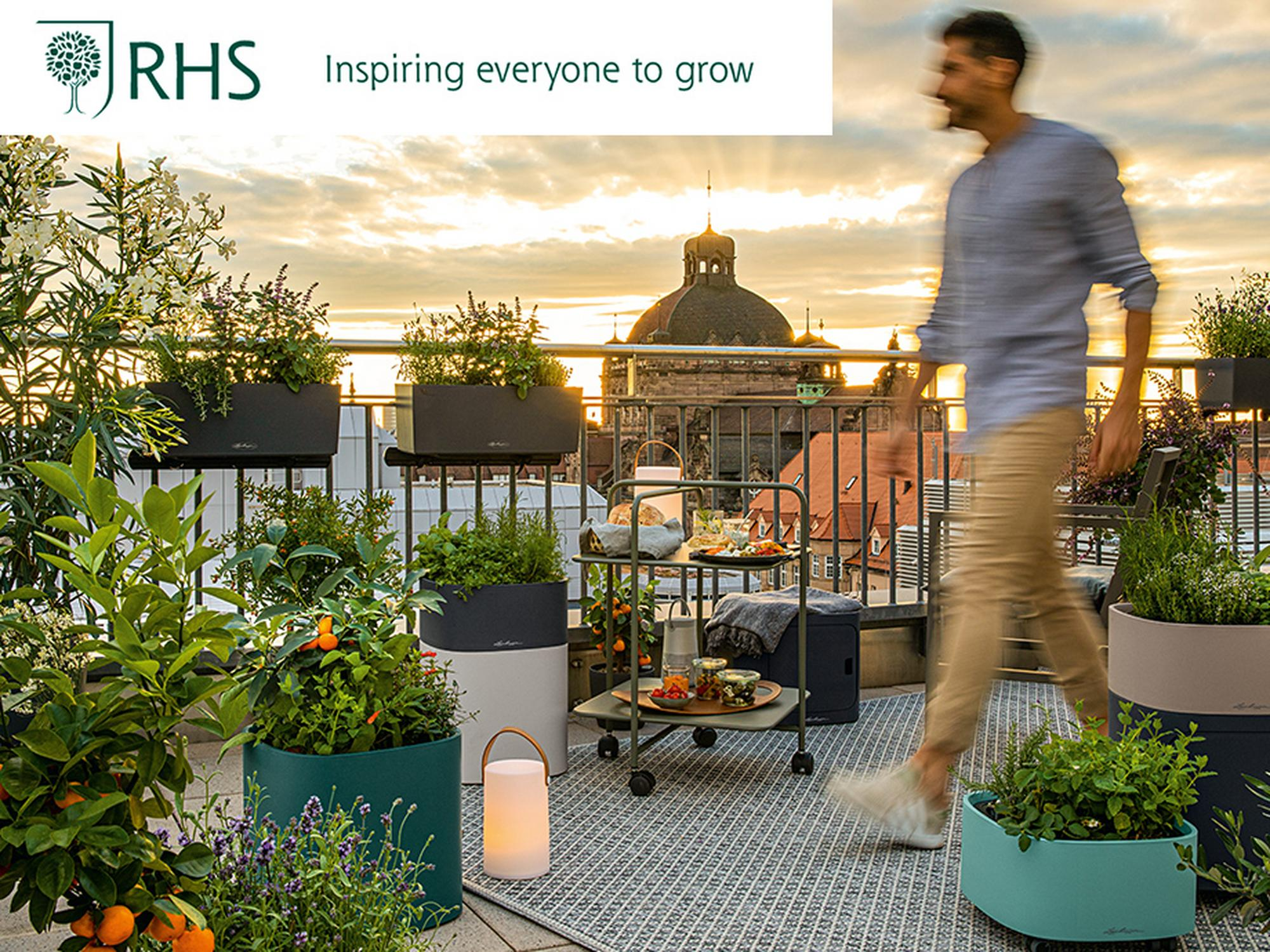 Visit us on stand HC441 - RHS Hampton Court Palace Garden Festival - 6-11th July