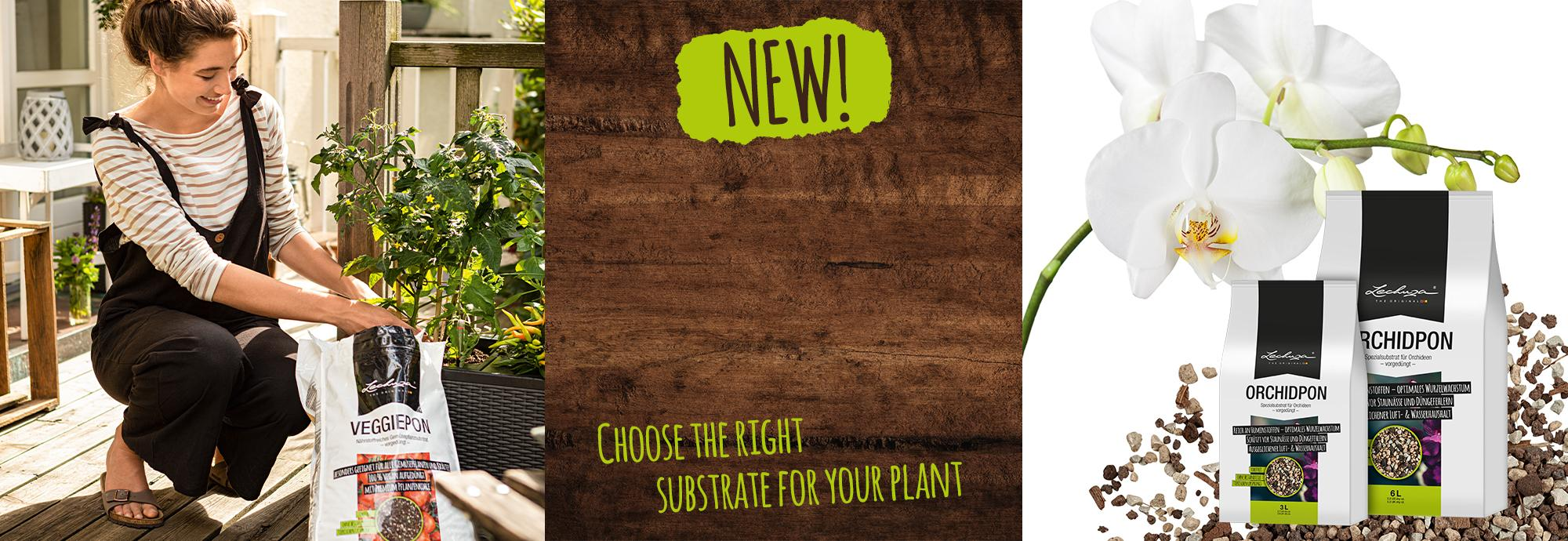 All-rounders! Discover the new planting substrates from LECHUZA