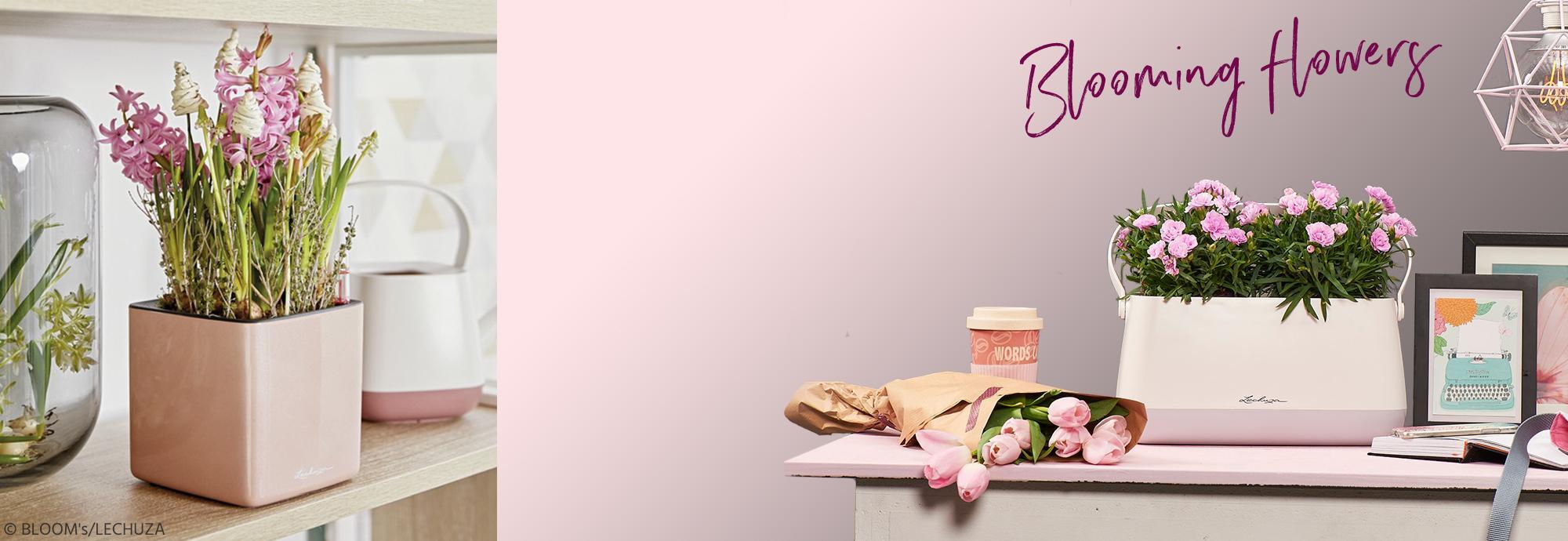hero_banner_tableplanters_spring