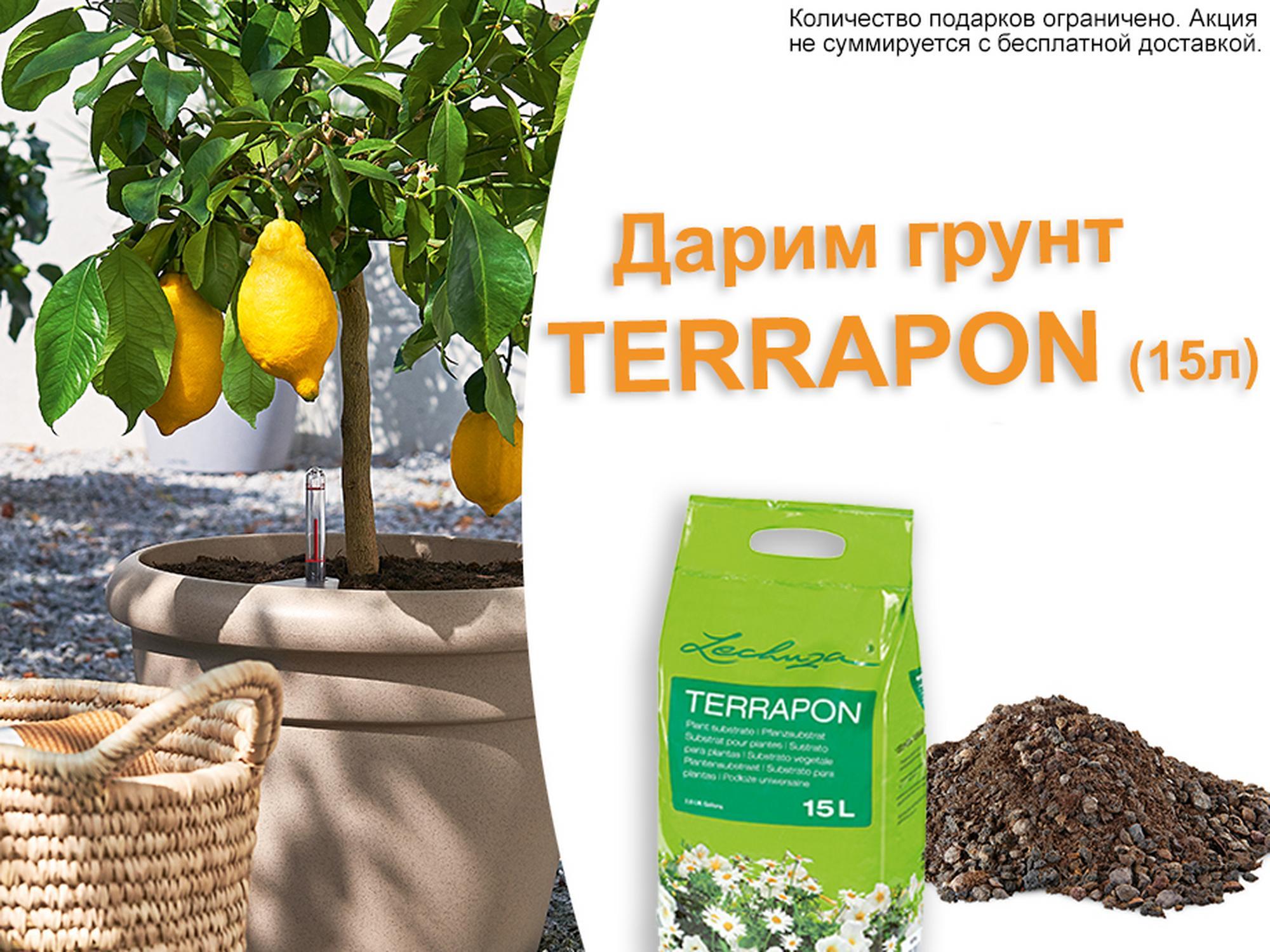 hero_banner_terrapon072019_xs_ru