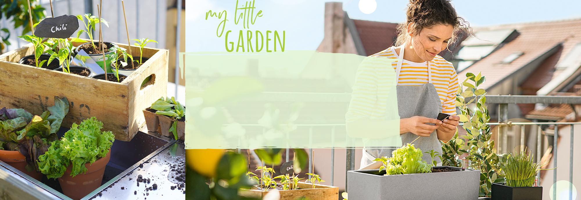 hero_banner_urban_gardening