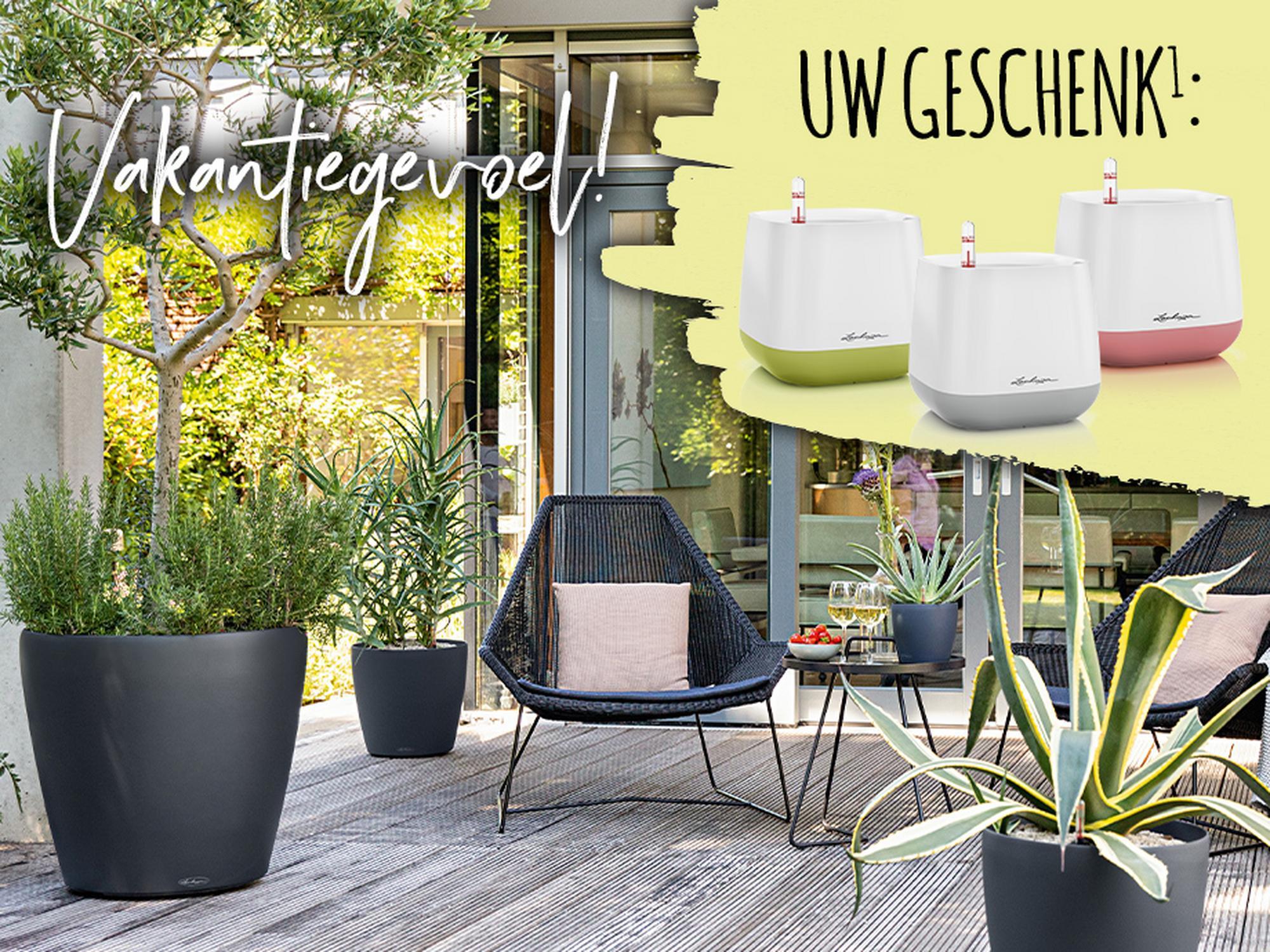 'Tuin en terras in zomerstemming en een YULA plantenpot vanaf € 80