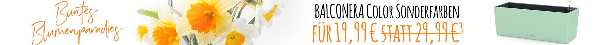 le_listing_banner_balconera_02221_de