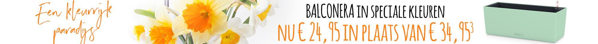 le_listing_banner_balconera_02221_nl