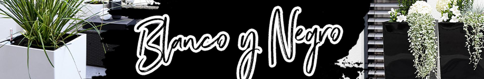 le_listing_banner_black-and-white_072020_xs_es