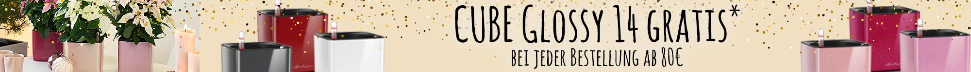 le_listing_banner_cube-glossy_de
