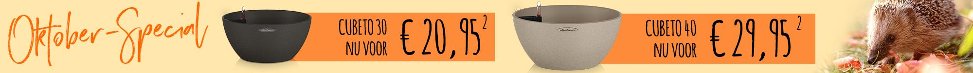 le_listing_banner_cubeto_special_011020_nl
