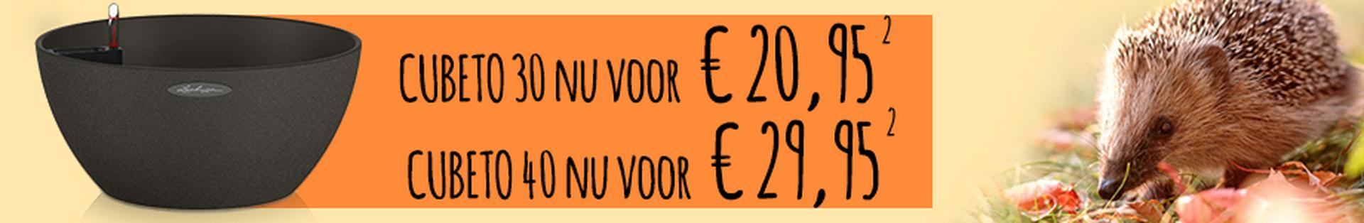 le_listing_banner_cubeto_special_011020_xs_nl