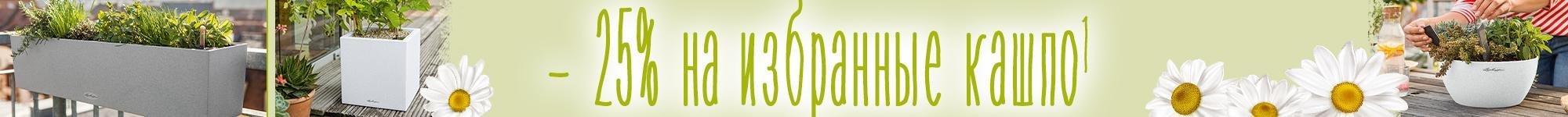 '- 25% на избранные кашпо CANTO