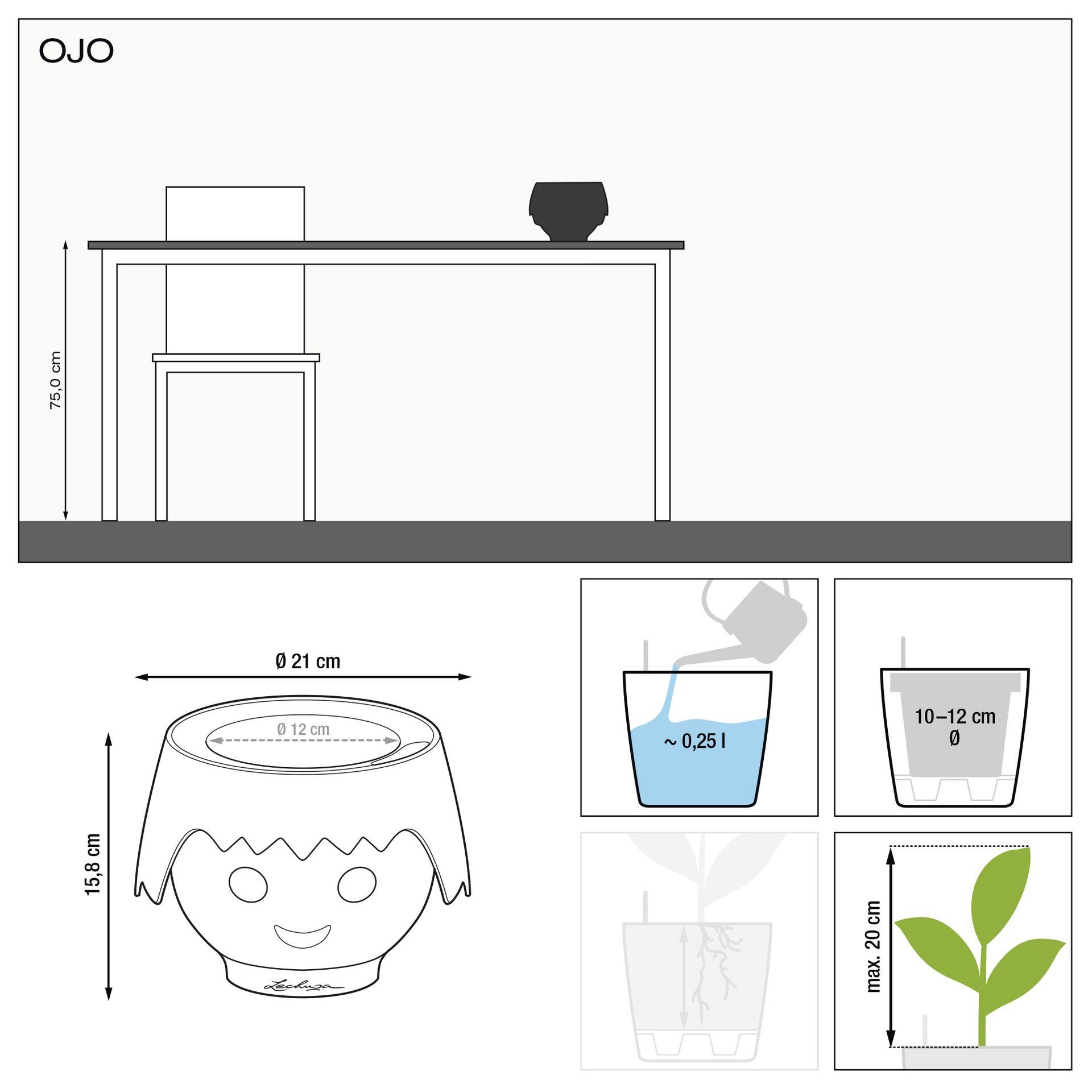 le_ojo_product_addi_nz
