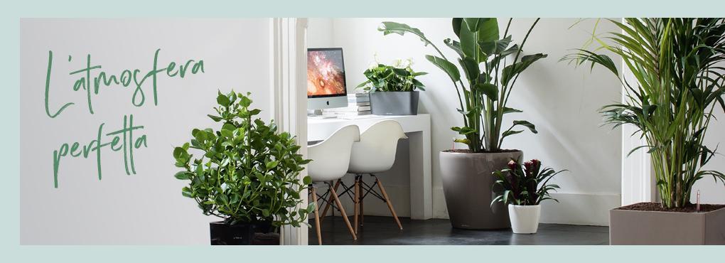 L'ambiente perfetto per la tua casa Green