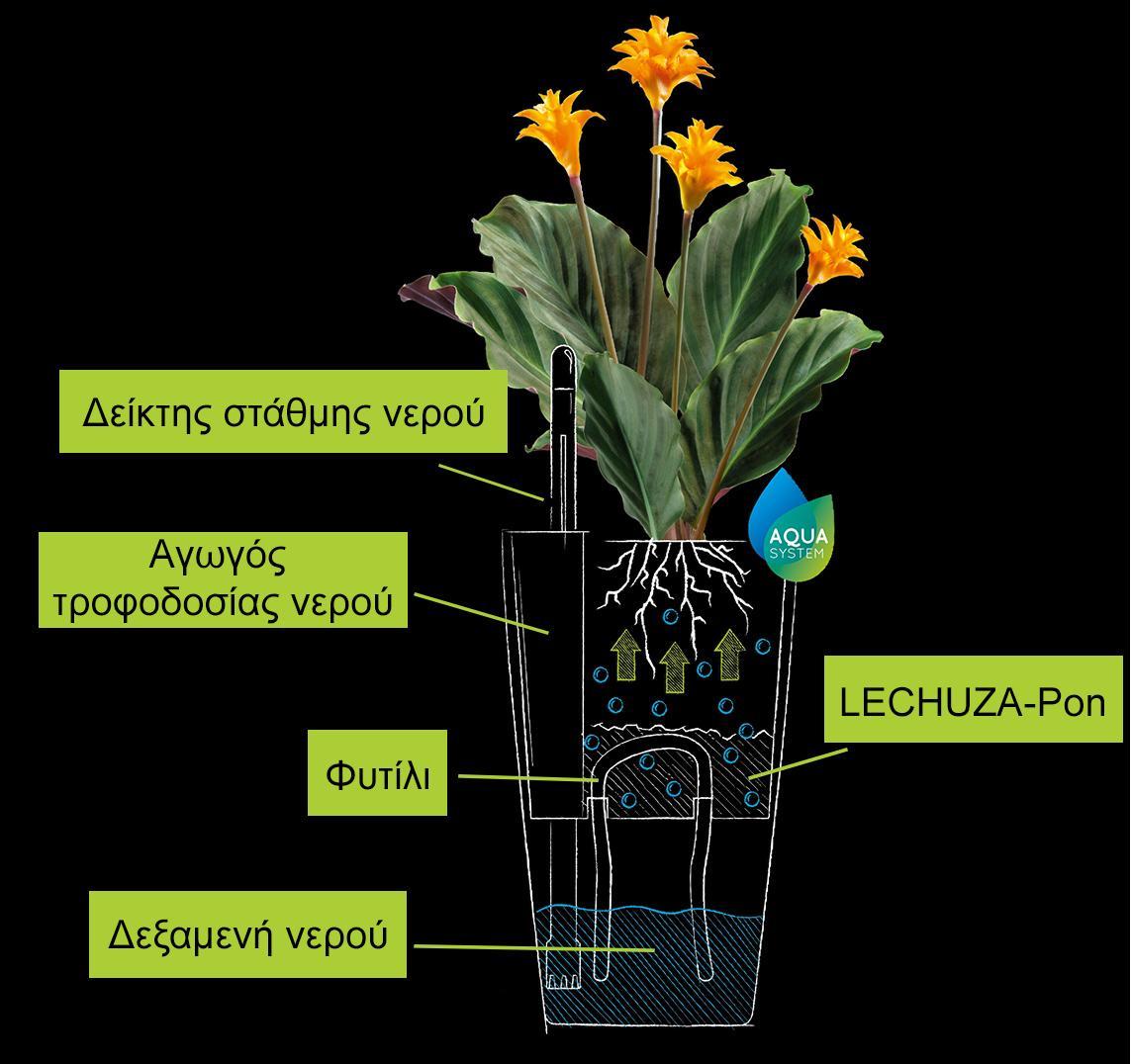 Σχέδιο με επεξήγηση του συστήματος φυτιλιού