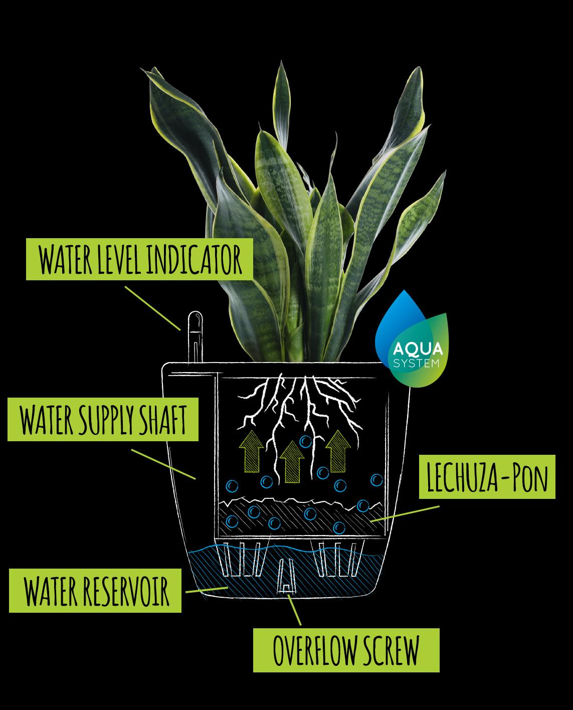 Drawing with explanation of the classic irrigation system
