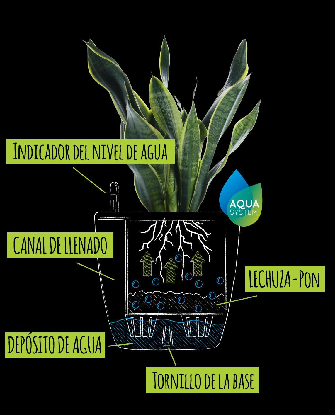 Dibujo con explicación del clásico sistema de irrigación