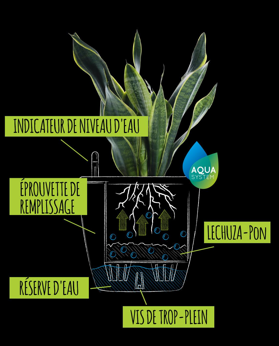 Dessin avec explication du système d'irrigation classique