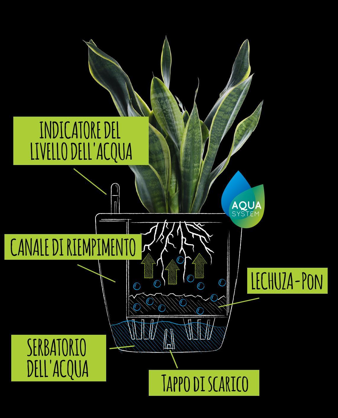 Disegno con spiegazione del classico sistema di irrigazione