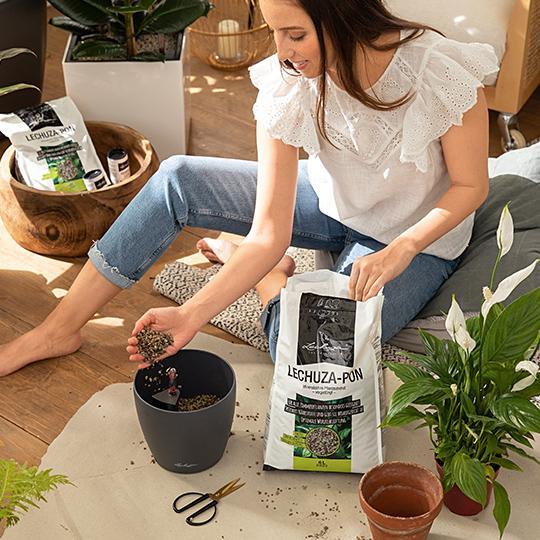 Instrucciones de plantación paso 3