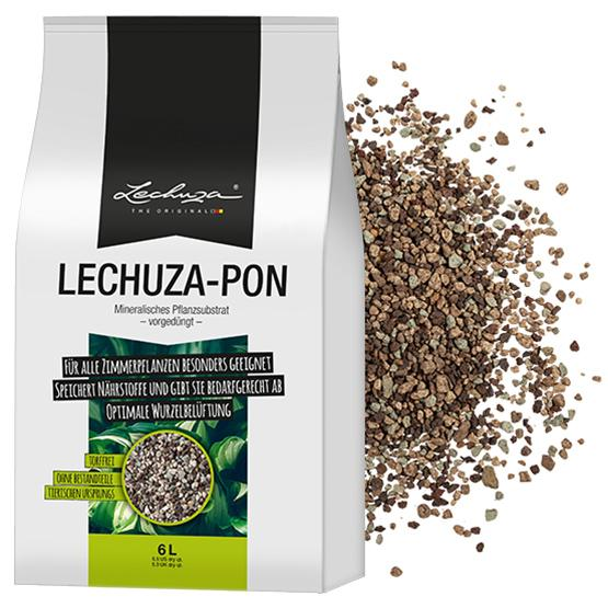Learn more about LECHUZAPON