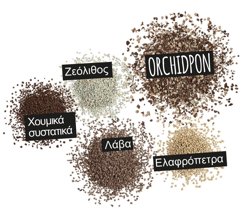 'ORCHIDPON: Ζεόλιθος