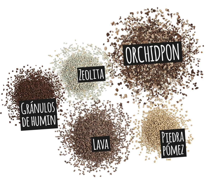 'Componentes de ORCHIDPON: Lava
