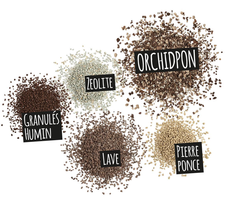 'Composantes de ORCHIDPON: Zeolite
