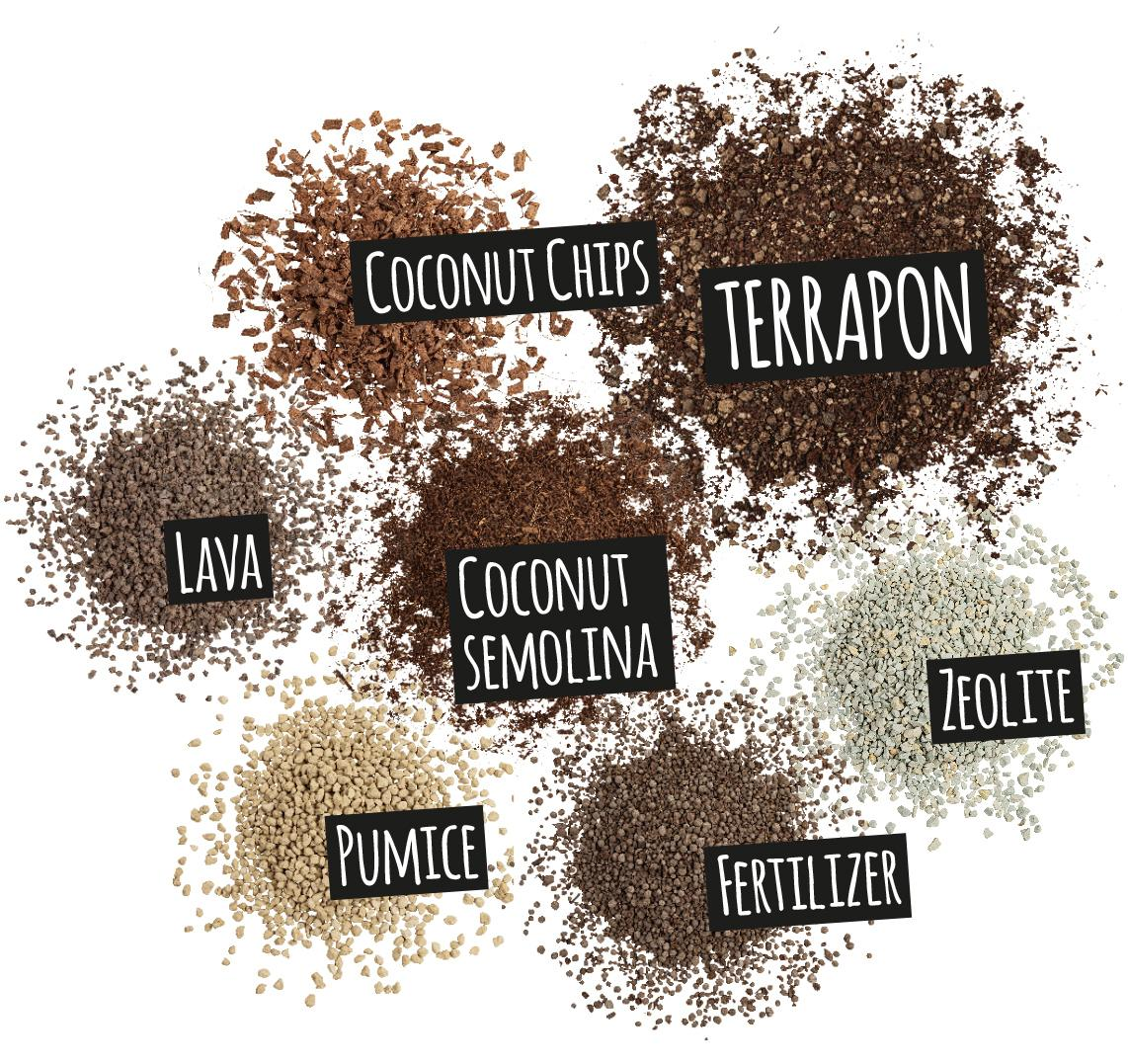 'Components of TERRAPON: coconut chips