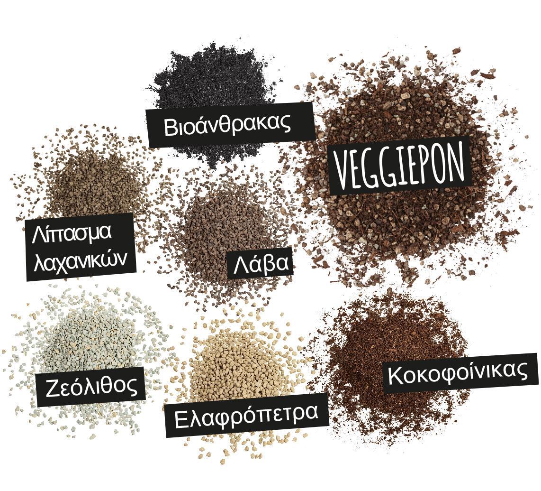 'VEGGIEPON: Βιοάνθρακας